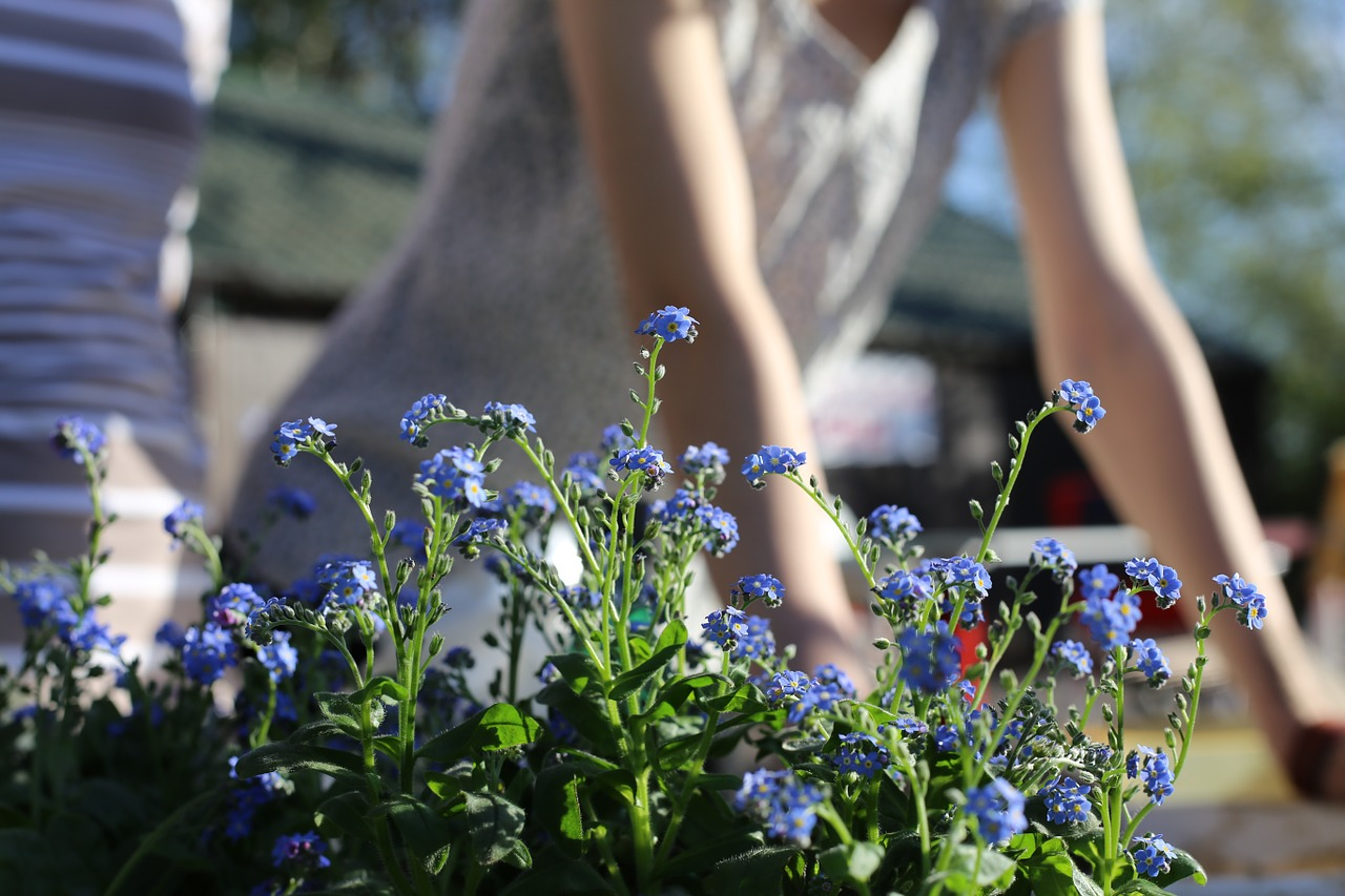 A Smarter Way to Garden and Do Yardwork